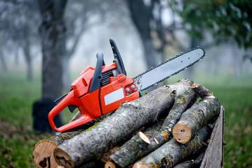 Avviso assegnatari anticipo sorti boschive 2020/2021 Ranzo