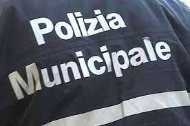 Ufficio Organizzazione Banca : Polizia municipale uffici organizzazione comunale comune